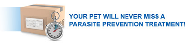 YOUR PET WILL NEVER MISS A PARASITE PREVENTION TREATMENT!